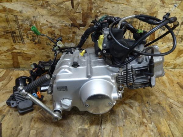 モンキーFi(AB27?)◎4速エンジン 電装系 インジェクション 12V | 中古バイクパーツ通販・買取 ジャンクヤード鳥取 JunkYard