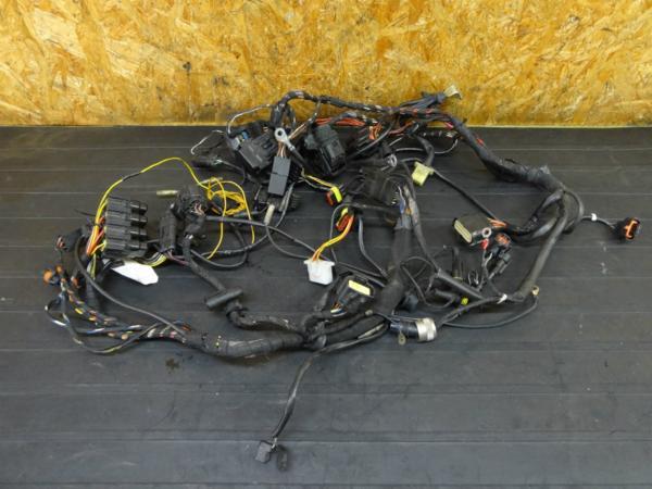 【160930】ドゥカティ 999S◇メインハーネス ケーブル | 中古バイクパーツ通販・買取 ジャンクヤード鳥取 JunkYard