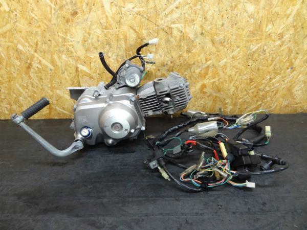 【150227】カブ50カスタム(AA01)◆エンジン セル付 4速 電装品 | 中古バイクパーツ通販・買取 ジャンクヤード鳥取 JunkYard